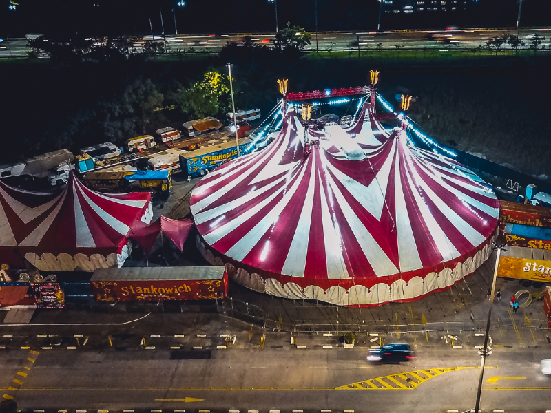 dreaming of a circus