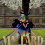 mallard the masked singer